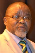 Honourable Minister Gwede